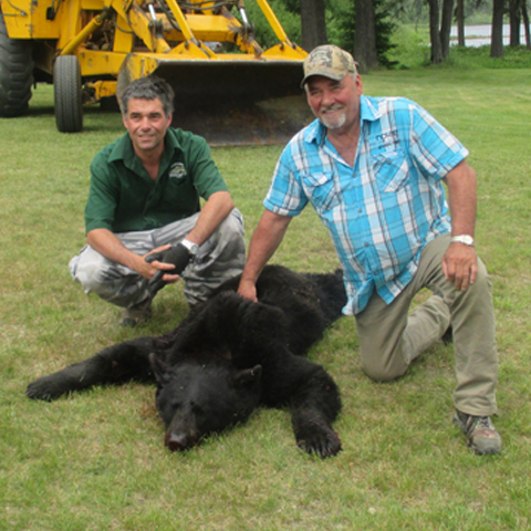 Chasse ours quebec